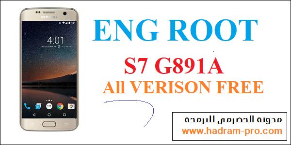 ENG ROOT G981A