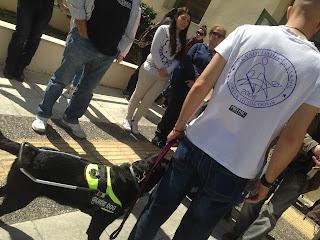 εκπαιδευτής με σκύλο οδηγό