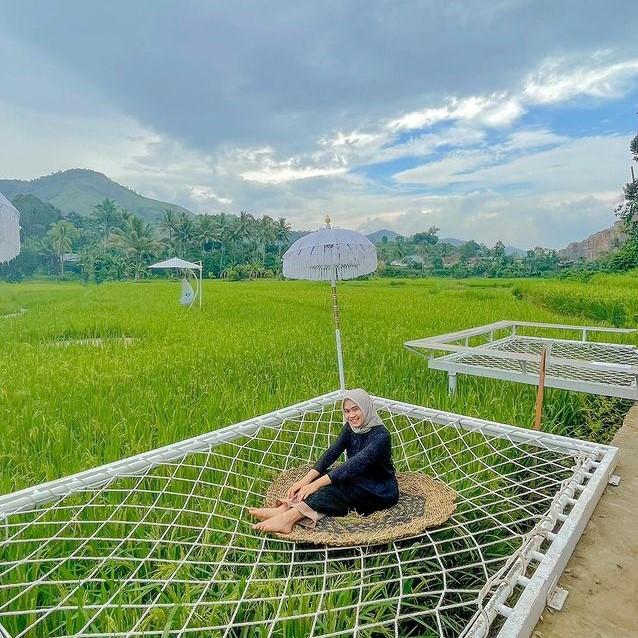 Sawah View Cafe Payakumbuh Sumatera Barat