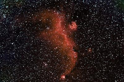 """IC 2177, nebulosa """"La Gavina"""""""