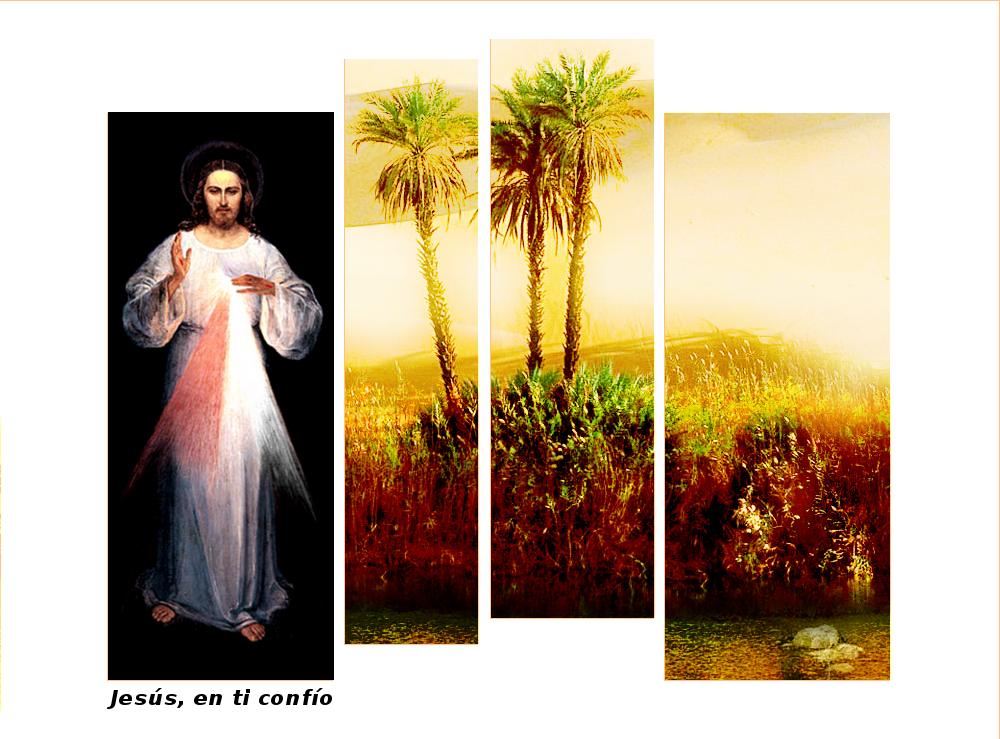 jesus rey de misericordia