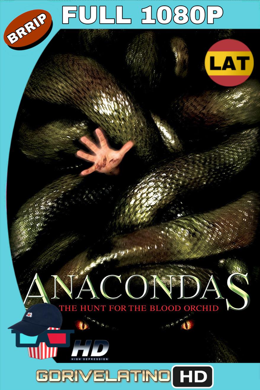 Anaconda 2: En busca de la orquídea sangrienta (2004) BRrip FULL 1080p (Latino-Inglés) MKV
