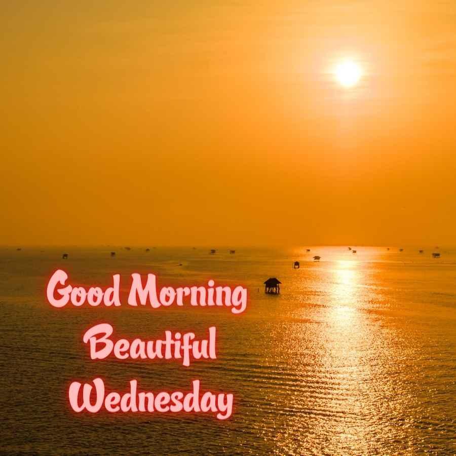 good morning happy wednesday photos