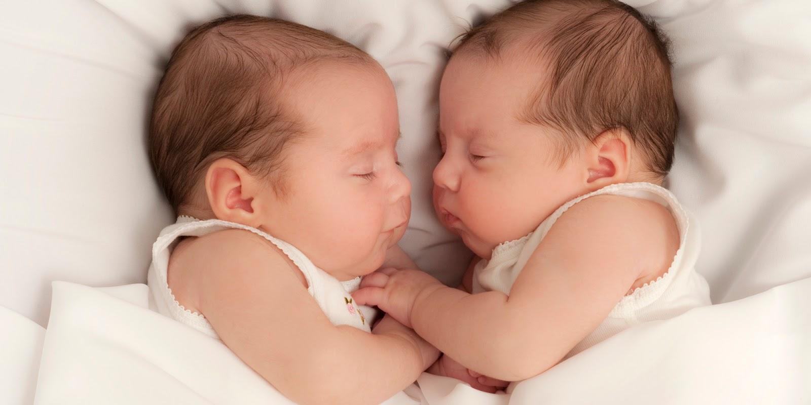 Anda Ingin Memiliki Anak Kembar Begini Caranya Sehat Alami News