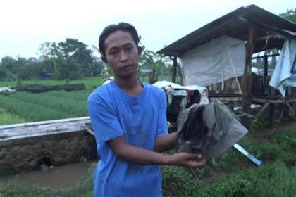 Tiga petani di kota Probolinggo tersambar petir, 1 orang tewas
