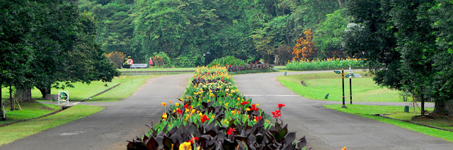 Kali ini saya akan memberikan informasi mengenai beberapa tempat  Tempat Wisata Favorit di Kota Bogor, Apakah Anda sudah Pernah Mengunjunginya?