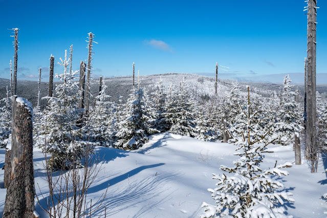 Winterwandern Mauth-Finsterau  Reschbachklause – Siebensteinkopf  Nationalpark Bayerischer Wald 20