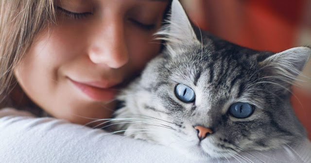 Every woman would rather snuggle up with the cat than with her partner