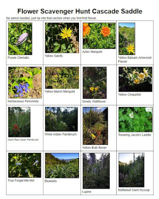 Cascade Wildflower Scavenger Hunt