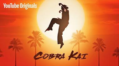Cobra Kai (Temporadas 1-2) HD 720p Latino 1 Link (Mega)