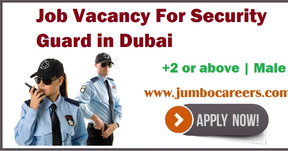 It Security Jobs Freshers