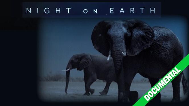 La Tierra de noche (2020) Temporada 1 Web-DL 1080p Latino-Castellano-Ingles