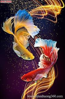 Tranh nghệ thuật Cá vàng