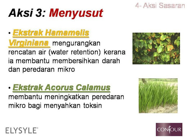 hamamelis virginiana,water retention,acorus calamus,selulit,slimming gel