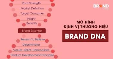 Học được gì từ Brand Key, Brand House hay Brand Pyramid?