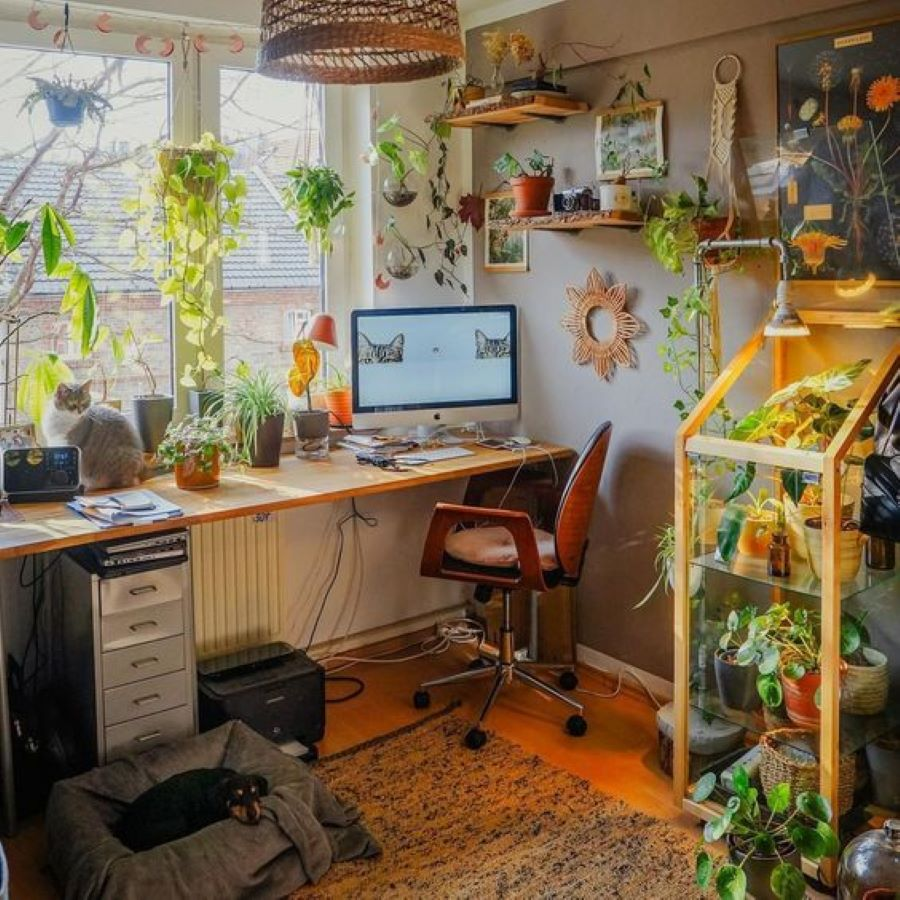 Say No To Monday Blues With Plants In The Office- designaddictmom