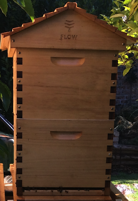 Flow_Hive_bee_hive.png