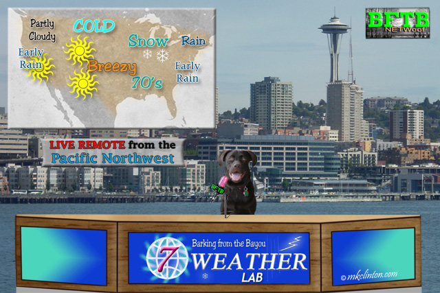 Paisley is BFTB NETWoof News' Weather Lab