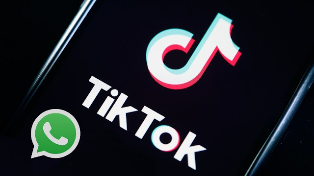 Tik Tok WhatsApp Group links