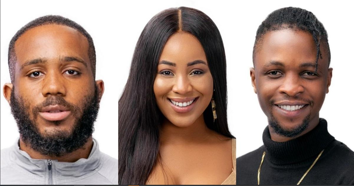 """#BBNaija :""""I'm Mentally Attracted To You And Physically Attracted To Kiddwaya' - Erica Tells Laycon (Videos) #Arewapublisize"""