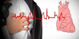 obat herbal alami untuk jantung berdebar kencang,obat tradisional jantung berdebar,obat herbal jantung berdetak keras,obat jantung berdebar paling ampuh,icp capsule obat herbal alami tradisional paling ampuh untuk jantung berdebar kencang ,obat herbal jantung berdebar dan sesak nafas,icp capsule obat jantung berdebar cepat,icp capsule obat herbal untuk jantung berdebar dan lemas