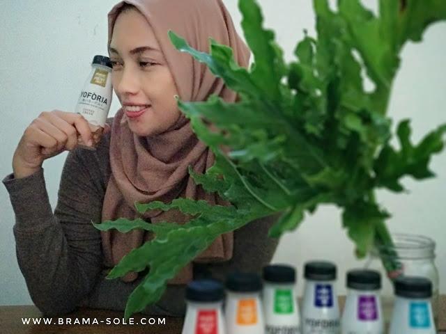 Serunya yoforia coffee cream aroma tiramisu