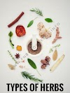Types of Herbs | fnbknowledge.com