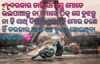 New & Latest Odia Shayari