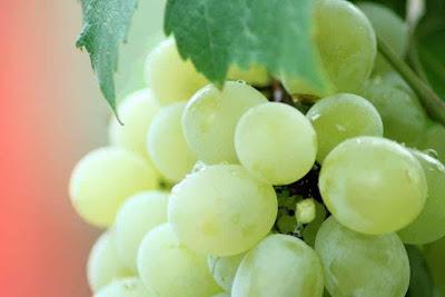 فوائد عصير العنب الاخضر