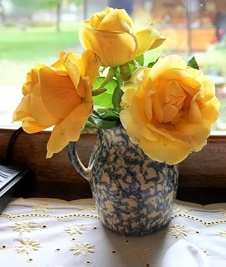 marvellous yellow roses