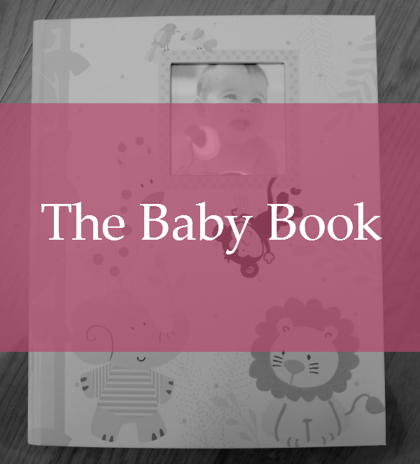 Sweet Turtle Soup: The Baby Book