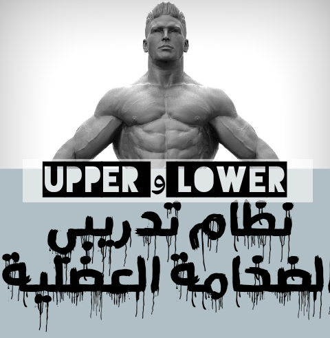 النظام التدريبي لبرنامج(upper و lower)