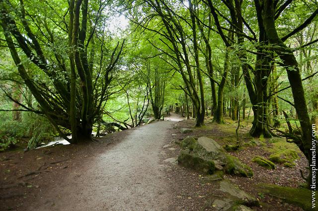 Cascada de Torc Anillo de Kerry Irlanda