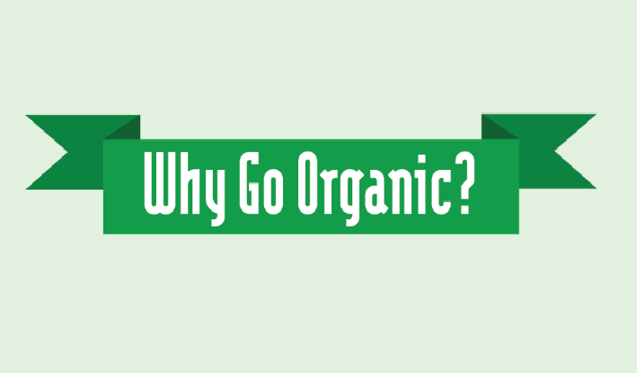 Why Using Organic Care Products is the Way to Go