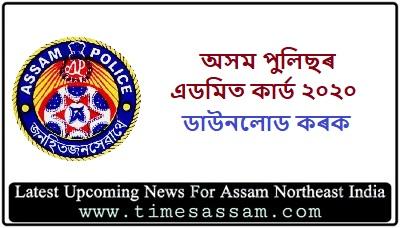 Assam Police Admit Card 2020 Ab Ub