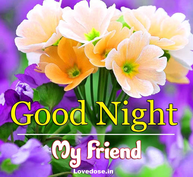 sweet good night images for whatsapp