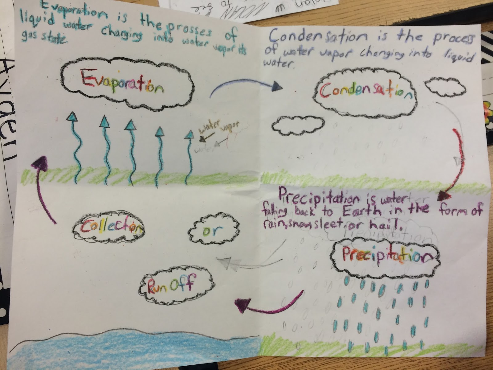 Mrs Estella S Third Grade Explorers Water Cycle Projects