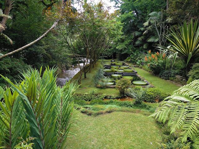 Jardín botánico de Furnas (Açores)