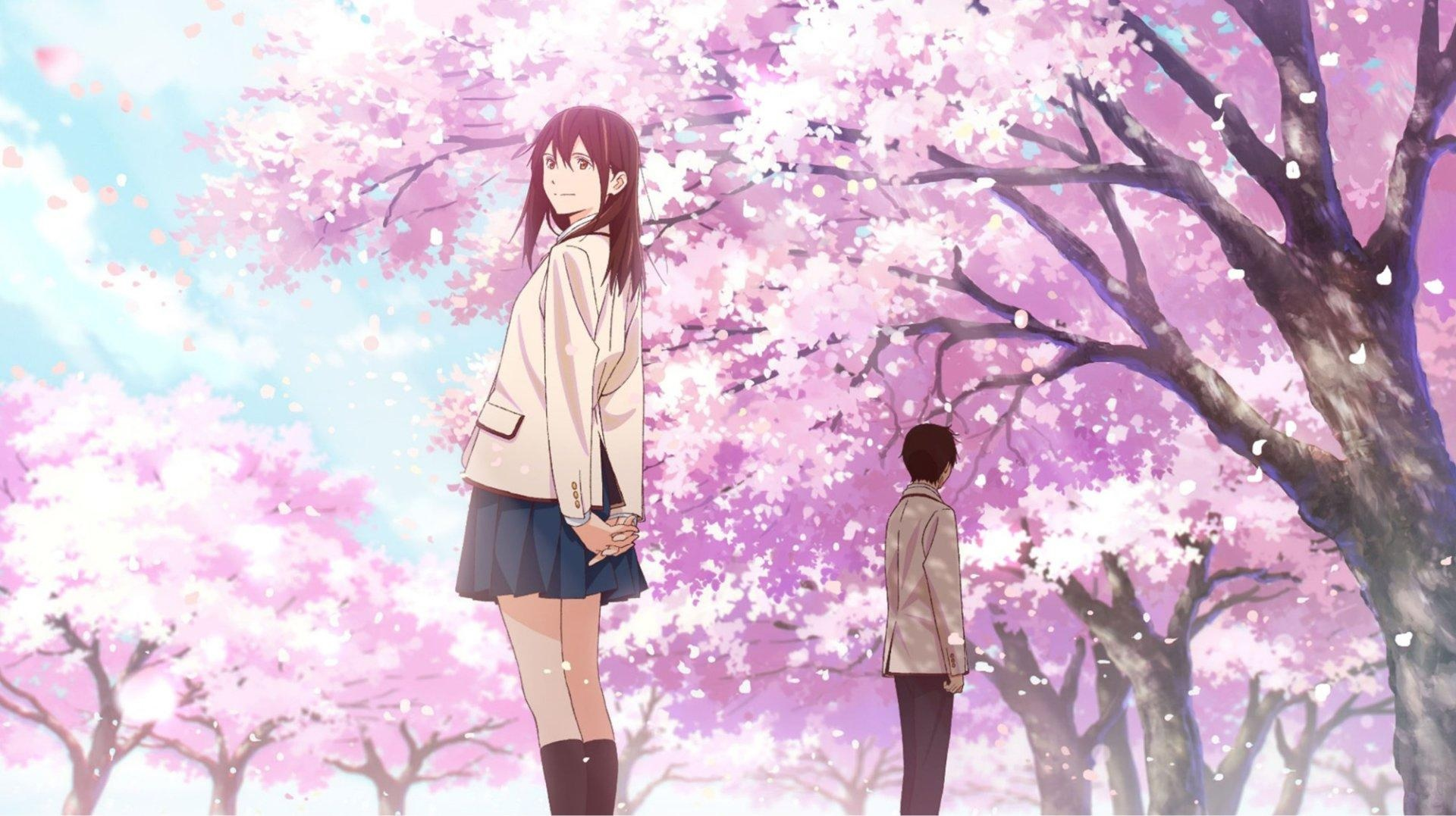 I Want to Eat Your Pancreas wallpaper