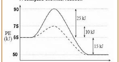 Struktur Enzim dan Mekanisme Kerja Enzim