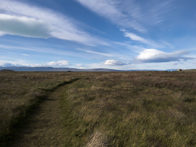 Path through the grass and fluffy clouds at Laguna Nimez Nature Reserve in El Calafate Argentina