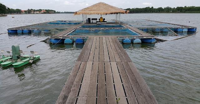 Ήγουμενίτσα: Ψαρεύουν με επιτυχία στα… θολά
