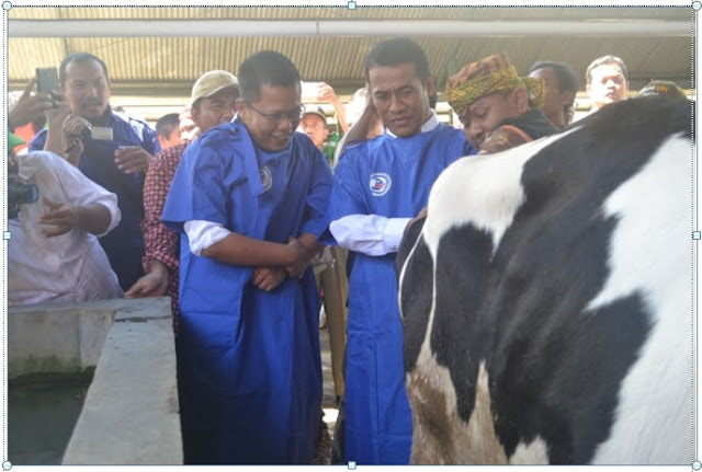 Disnakkan Kabupaten Bogor Percepat Pencapaian Swasembada Daging 237