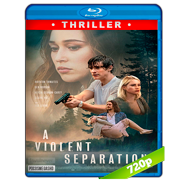 A Violent Separation (2019) BRRip 720p Audio Dual Latino-Ingles