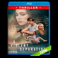 A Violent Separation (2019) BRRip 720p Audio Dual Latino-Ingles