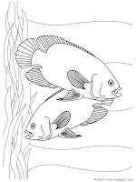 Aquarium Fish Oscars Printable Kids Coloring Sheet