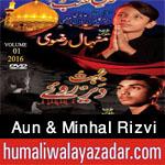 http://www.humaliwalayazadar.com/2016/09/aun-minhal-rizvi-nohay-2017.html
