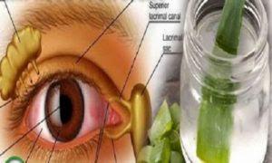 Esta hierba mejora la vista, incluso en personas mayores de 70 años. Resuelve problemas de la visión y la presión ocular!