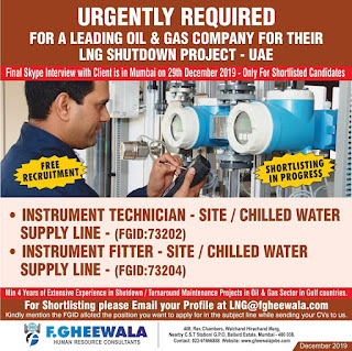 LNG Shutdown Project in UAE