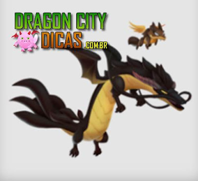 Dragão Coiote - Informações